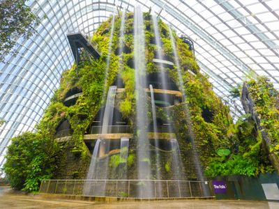si Cloud Forest,