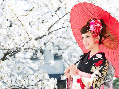 Japonia Festivalul Ciresilor in Floare 2017 !