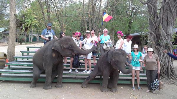 Thailanda Satul Elefantilor