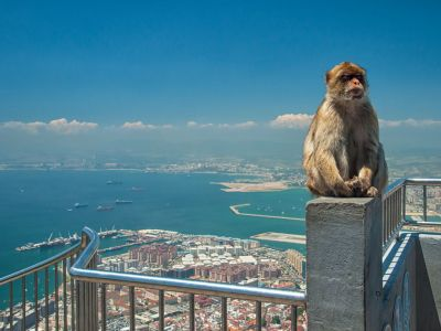 Gibraltar-Londra DUO City Break