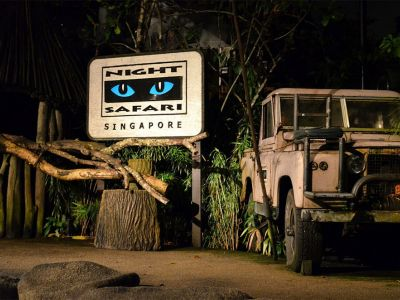 optional, Night Safari. Primul Night Safari din lume, organizat pe o suprafata de peste 40 de hectare de jungla secundara, va va dezvalui imediat dupa apus misterul si drama din jungla tropicala cu efecte uimitoare !